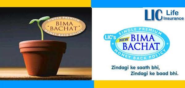 LIC New Bima Bachat Plan - देना होता है सिंगल प्रीमियम, जानिए और क्या-क्या हैं फायदे