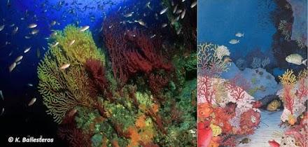 Κοραλλιγενείς Οικότοποι – Προστατεύοντας το Κρυμμένο Μυστικό Του Αιγαίου