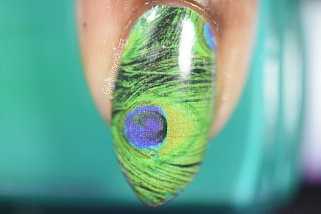 Born Pretty Store Peacock Feather Water Decals