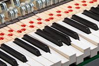 Digital Piano wood keys