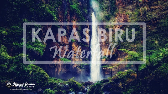 Kapas Biru waterfall tourist attraction in Lumajang