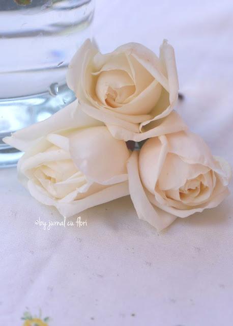 #delicat #soft #pastel #trandafiri