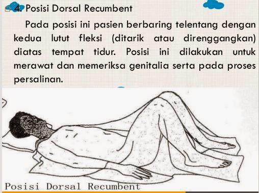 Recumberant Dorsal – Wonderful Image Gallery