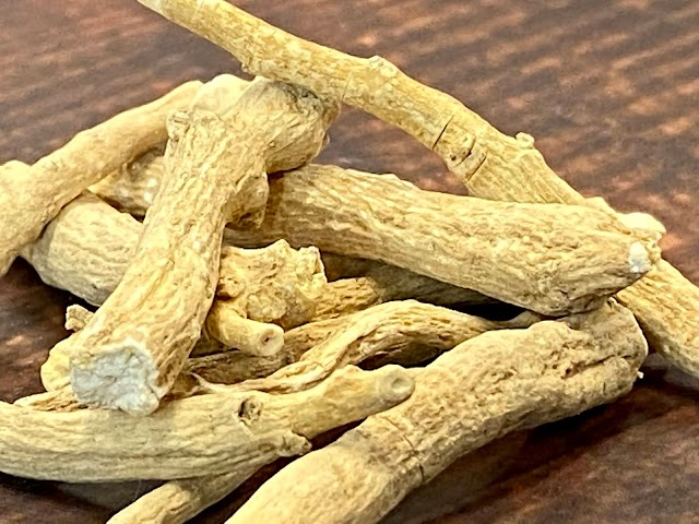 Ashwaganda Uses and Health Benefits