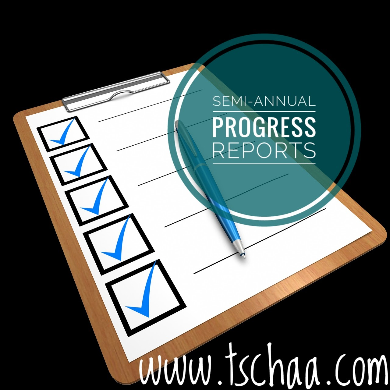photograph relating to Homeschool Progress Report Printable called TSCHAA: Semi-Once-a-year Improvements Studies