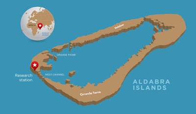 Penyebaran Wilayah Kura-Kura Raksasa Aldabra