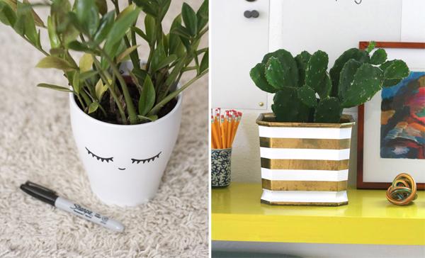 Diy Pots For Small Plants