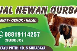 Download Template Banner Hewan Qurban CDR