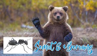 """Urutan peristiwa pada cerita """"Semut dan Beruang"""""""