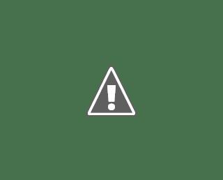 UNV, Programme Finance Assistant