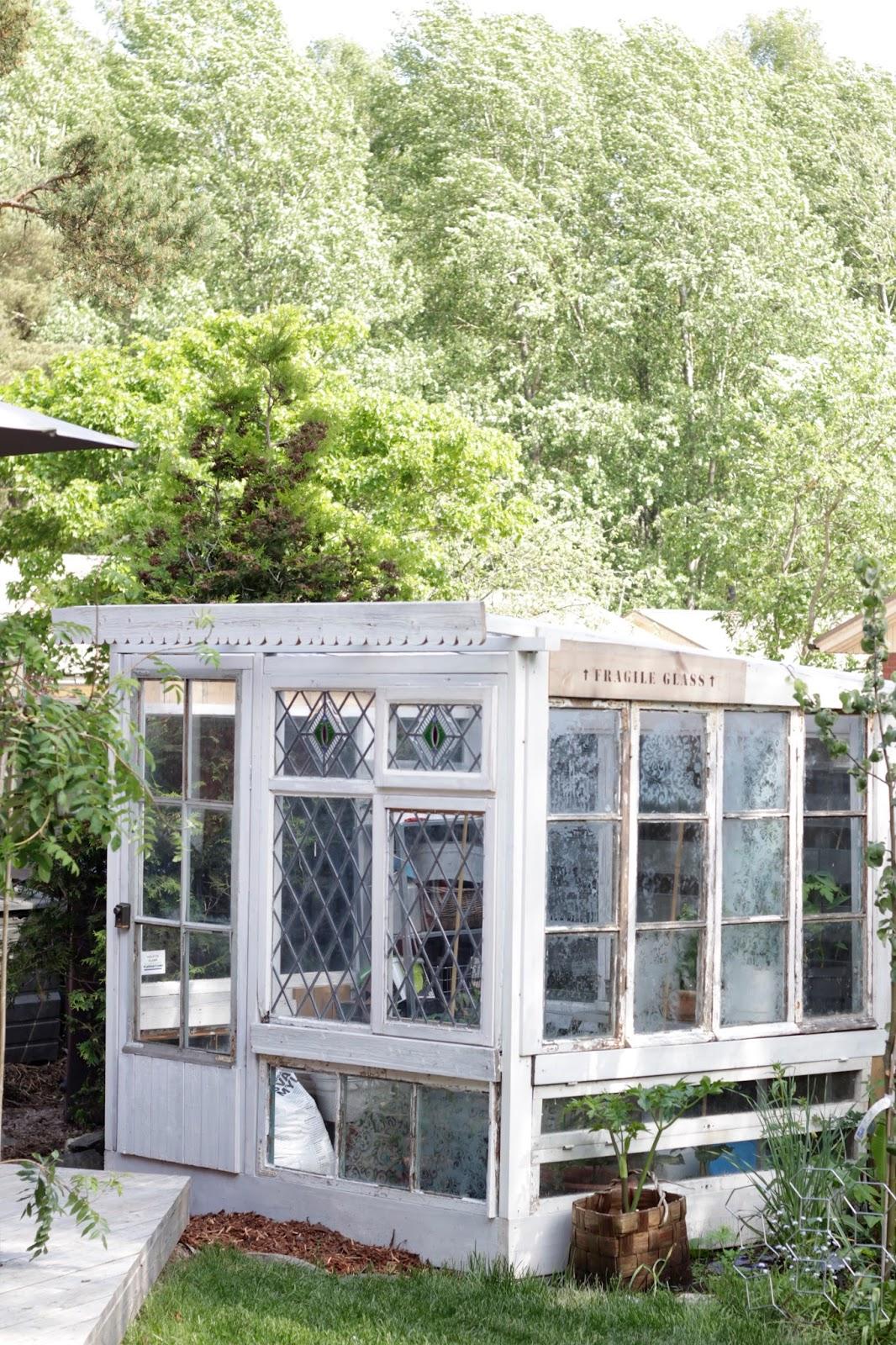 Kasvihuone Ikkunoista