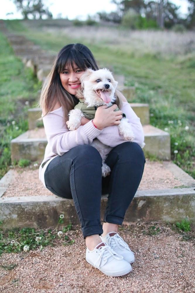 My Dog Sokchea in 2019
