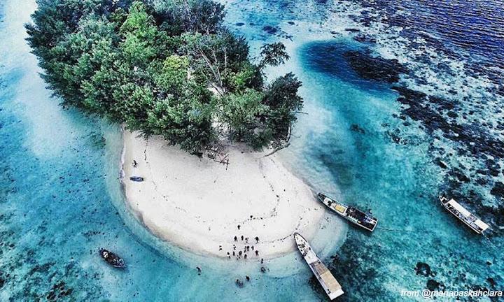 pulau dolphin di pulau harapan