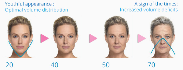 Collagen loss as one ages