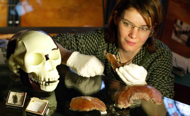 Elaborate hoax: A Natural History Museum scientist examines the Piltdown Man fragments during a previous investigation.