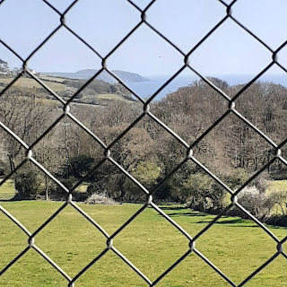 Foreground is a chainlink fence, middle ground a paddock, background is the sparkling sea and some cliffs dark against bright water