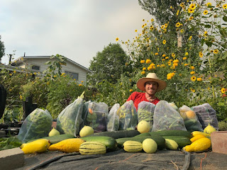 Vegetable Bounty