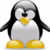 Pinguim tv 2021