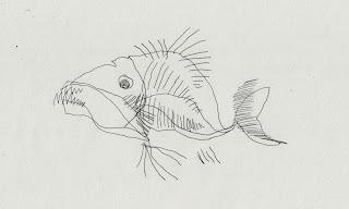 http://animations01.blogspot.com/p/strange-fish.html