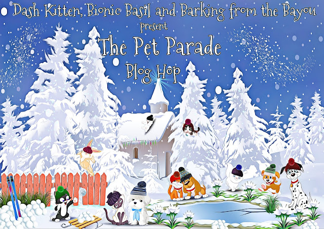 The Pet Parade Winter Banner 2019