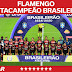 Flamengo é Octacampeão! Flamengo é o maior campeão brasileiro desde 1971