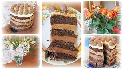 chocolate nutella layer cake macadamia nut ombre
