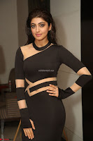 Pranitha Subhash in a skin tight backless brown gown at 64th Jio Filmfare Awards South ~  Exclusive 174.JPG