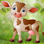 Play Games4King - G4K Turbulen…