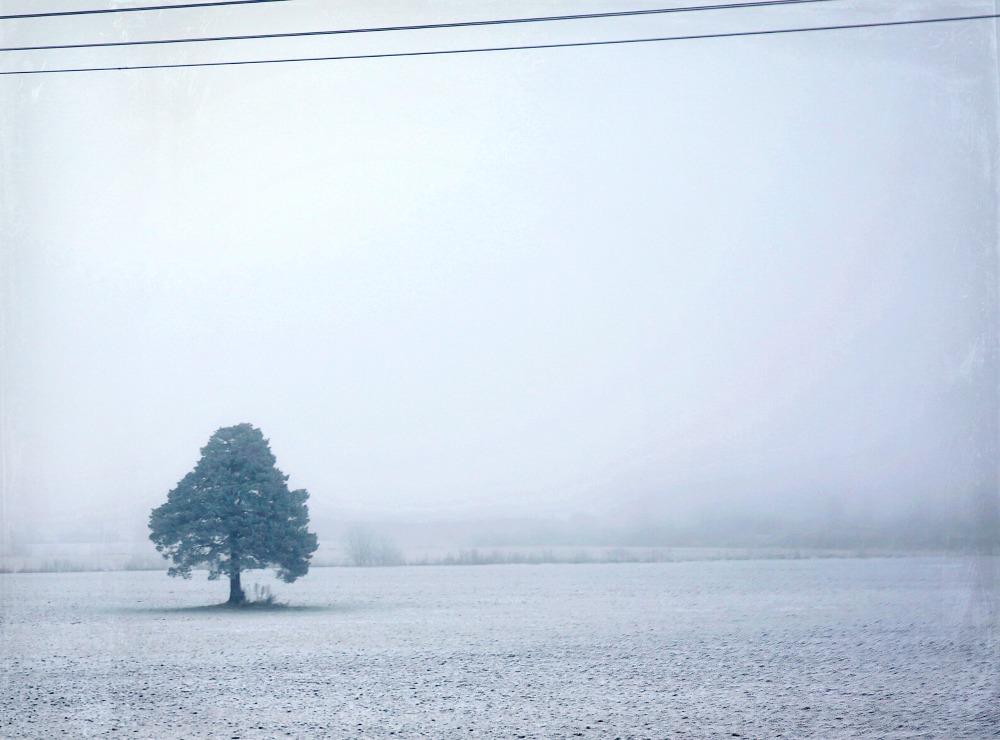 talvi, talvimaisema, winter, Finland