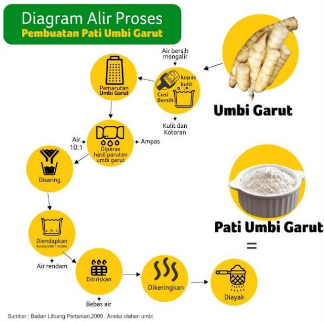 Proses pembuatan ekstrak umbi garut untuk Jenang Gemi