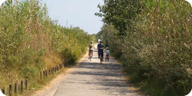 Family Cycling Holidays in Mallorca