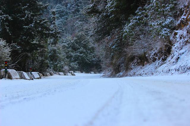 snow at dhanaulti