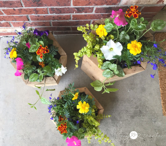 hexagon planters for your porch, MyLove2Create
