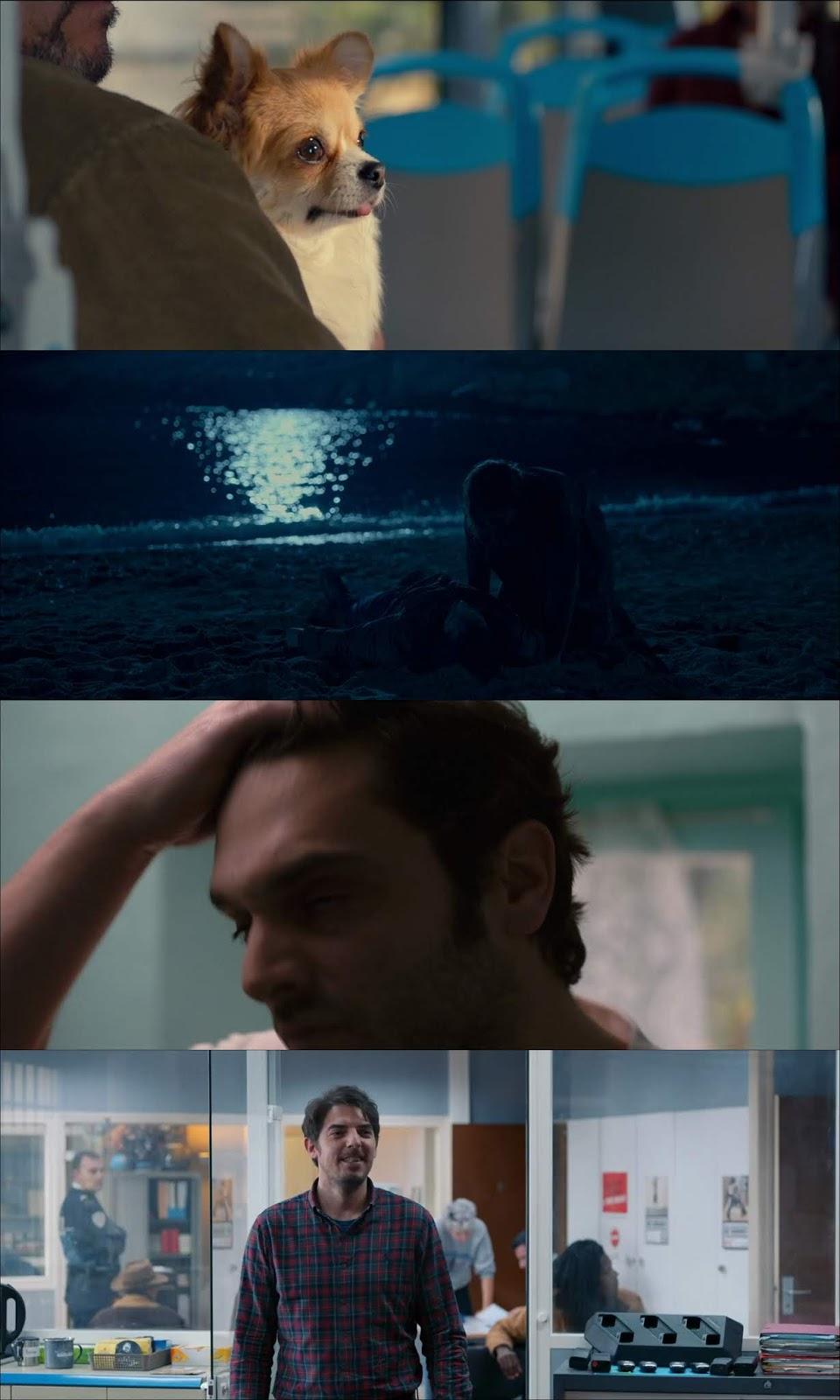 En Liberté (2018) HD 1080p Latino