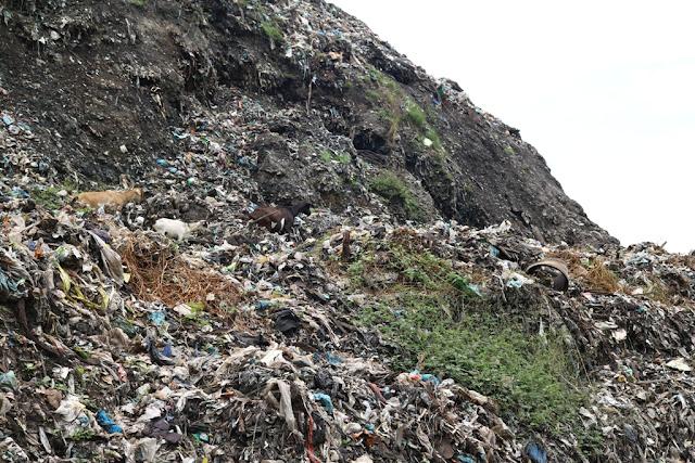 Tempat Pembuangan Akhir Sampah