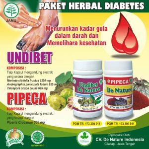 Obat Diabetes (Penyakit Gula), Obat Kencing Manis