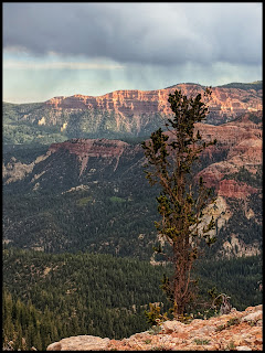 Rain starting to fall while Sunrise is still fighting to light up  Cedar Breaks.