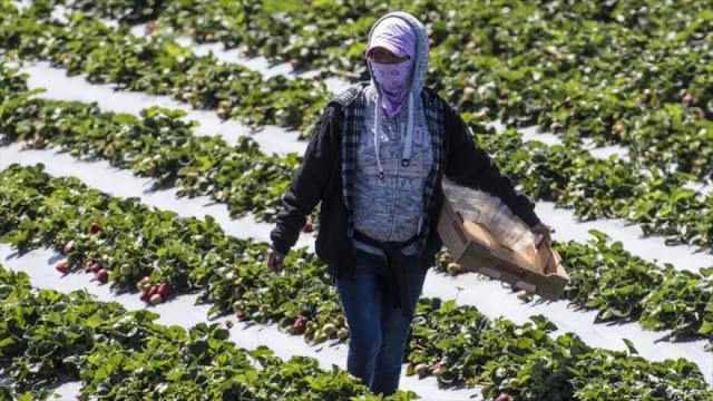 Washington Post: COVID-19 golpea ahora zonas rurales de EEUU