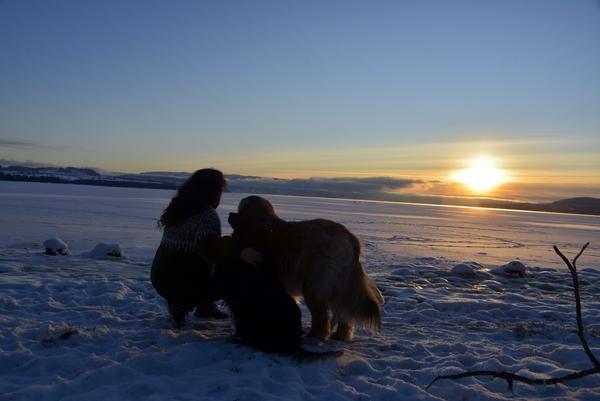 røsholmstranda solnedgang