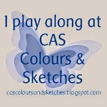 CAS Colours & Sketches