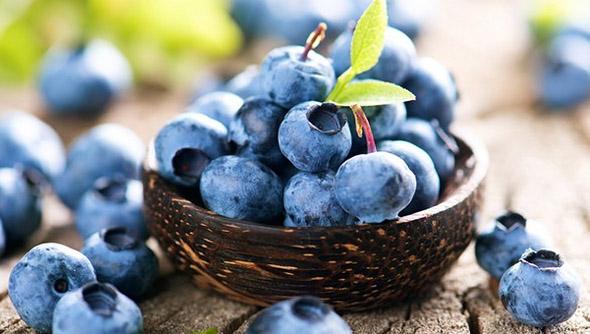 buah blueberry, rasa buah blueberry, khasiat buah blueberry, harga buah blueberry, cara makan buah blueberry, manfaat buah blueberry, kandungan buah blueberry, manfaat buah blueberry untuk kecantikan, buah blueberry hutan, manfaat buah blueberry untuk bayi, manfaat buah blueberry untuk ibu hamil,