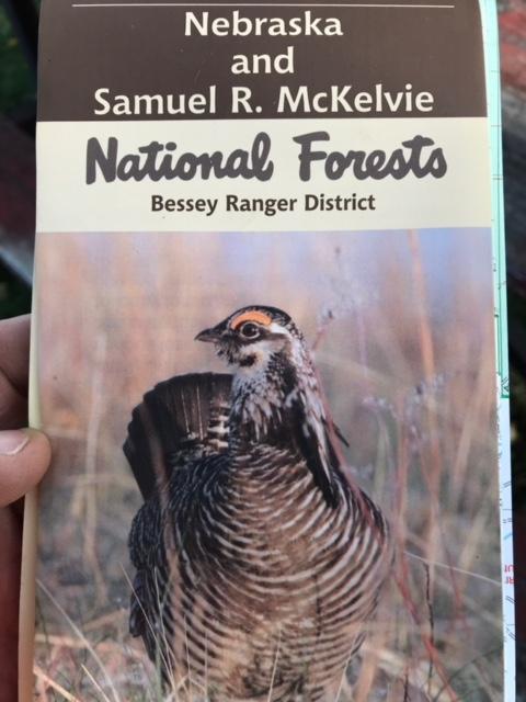 A Bird Hunter's Thoughts: The Sandhills! Nebraska Prairie Chickens