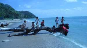 Pantai Pulau Mayangkara Bawean-image lifestyle.liputan6.com