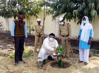 बाबा हरदेव महाराज की स्मृति में निरंकारी परिवार ने किया पौधरोपण   #NayaSaberaNetwork