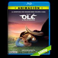 Olé, el viaje de Ferdinand (2017) BRRip 1080p Audio Dual Latino-Ingles