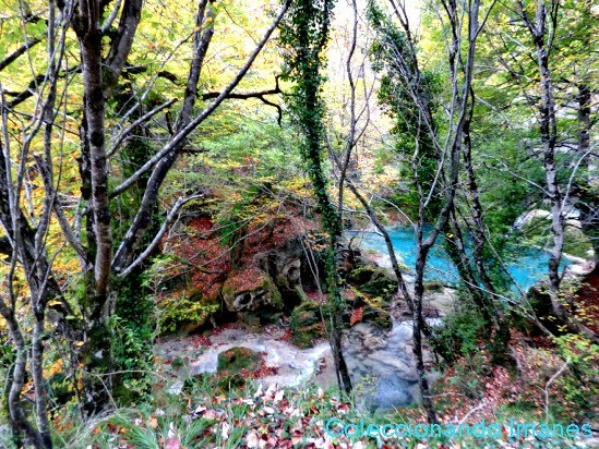 Excursión por el Nacimiento del Urederra - aguas turquesas