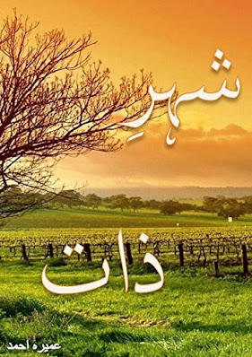 Shehr-e-Zaat Urdu novel