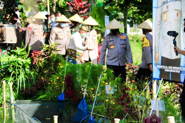 Ini alasan Desa Kembang Kuning raih juara 1 Lomba Kampung Sehat