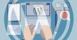 Learn What WordPress Is And Why To Use It