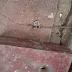 नरकटियागंज हनुमान मन्दिर में चोरी, पुजारी परेशान